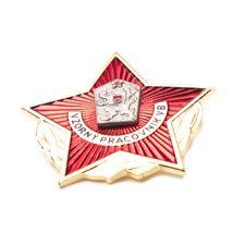 Odznaka wzorowy pracownik VB